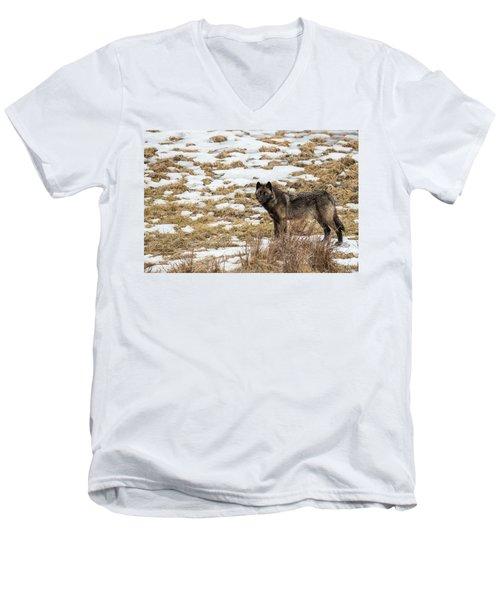 W59 Men's V-Neck T-Shirt