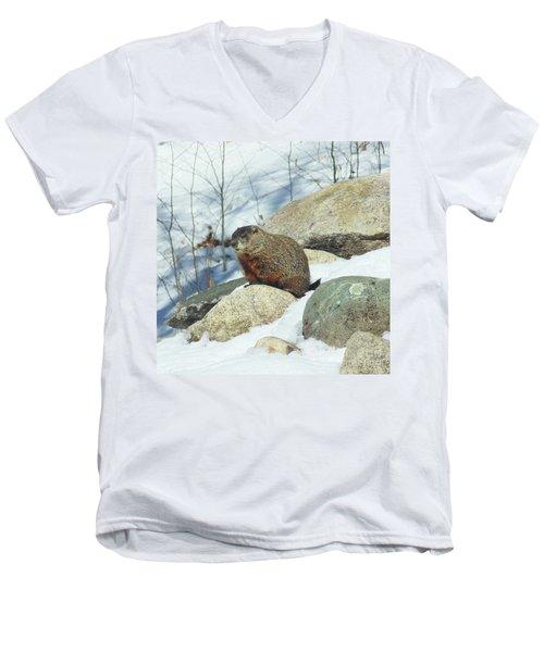 Winter Groundhog Men's V-Neck T-Shirt