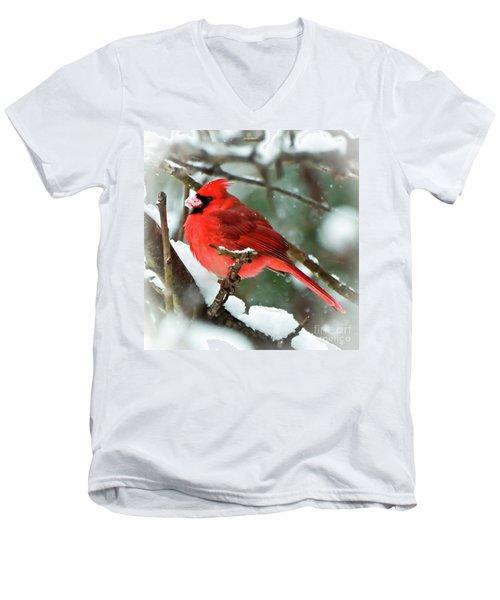 Winter Red Bird - Male Northern Cardinal With A Snow Beak Men's V-Neck T-Shirt