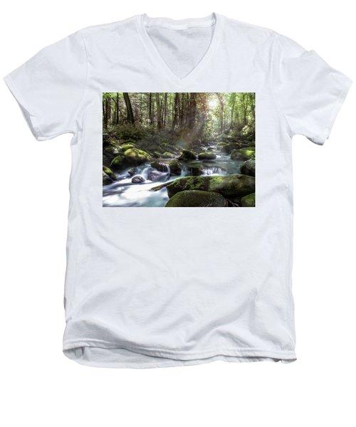 Woodland Falls Men's V-Neck T-Shirt