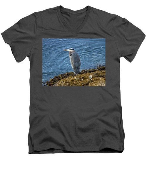 Men's V-Neck T-Shirt featuring the photograph  Blue Heron On A Rock by Eti Reid