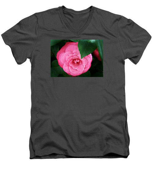 Camellia Japonica ' Elizabeth Weaver ' Men's V-Neck T-Shirt by William Tanneberger