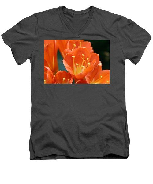 Clivia Men's V-Neck T-Shirt