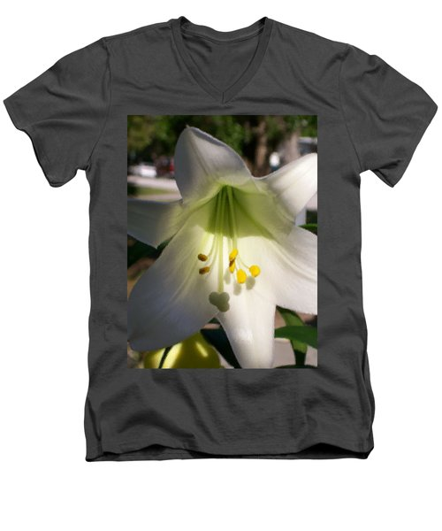 Men's V-Neck T-Shirt featuring the photograph  Easter Peace by Belinda Lee