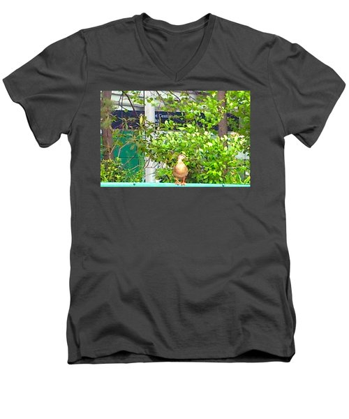 Look At Me Men's V-Neck T-Shirt by Amazing Photographs AKA Christian Wilson
