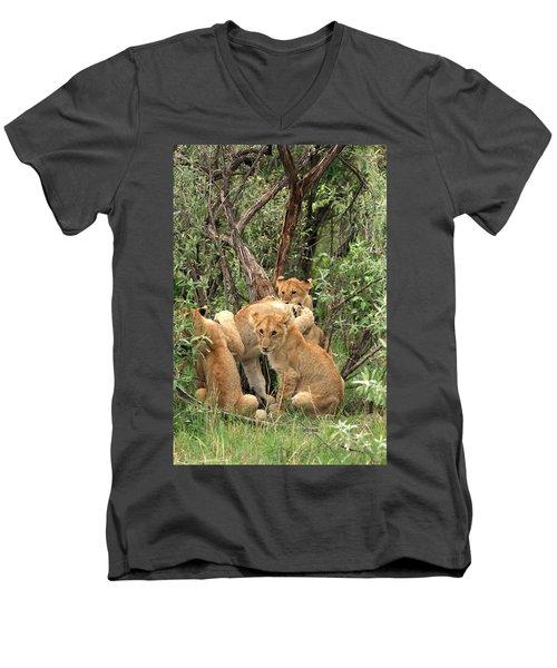 Masai Mara Lion Cubs Men's V-Neck T-Shirt by Aidan Moran