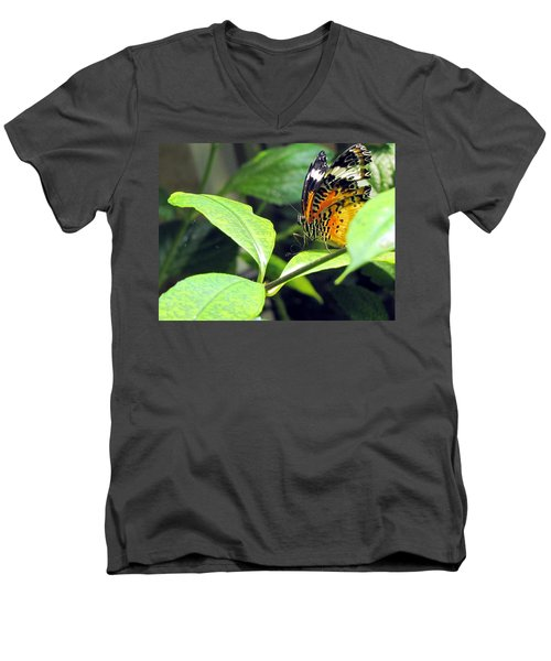 Men's V-Neck T-Shirt featuring the photograph  Tiger Wings by Jennifer Wheatley Wolf