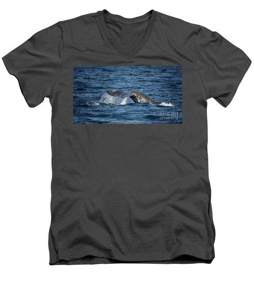 Whale Fluke In Dana Point Men's V-Neck T-Shirt