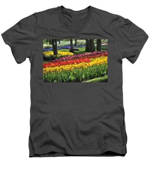 Men's V-Neck T-Shirt featuring the photograph 090811p123 by Arterra Picture Library