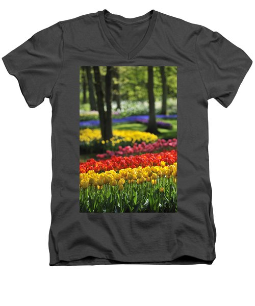 Men's V-Neck T-Shirt featuring the photograph 090811p124 by Arterra Picture Library