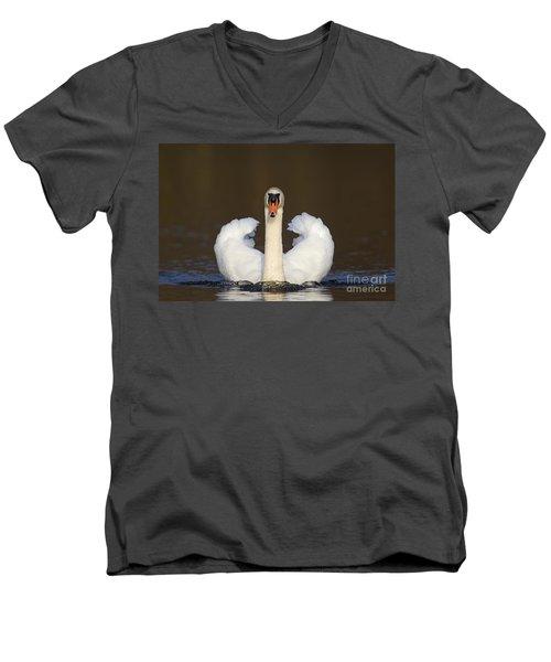 121012p165 Men's V-Neck T-Shirt
