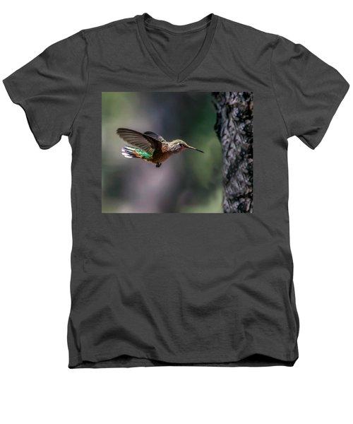 Broad-tailed Hummingbird Men's V-Neck T-Shirt