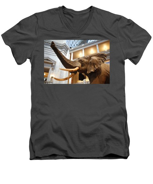 Bull Elephant In Natural History Rotunda Men's V-Neck T-Shirt