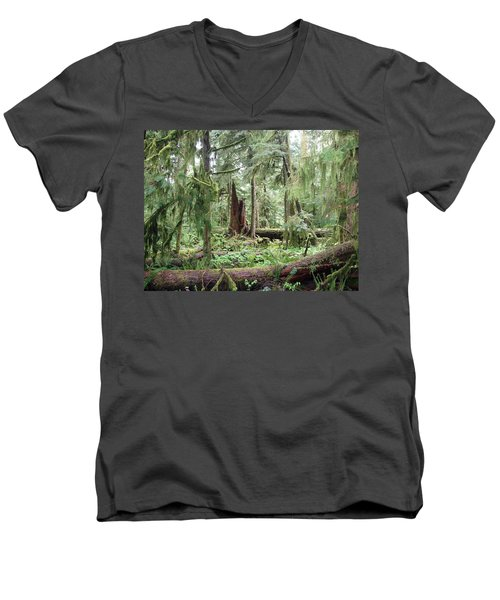 Men's V-Neck T-Shirt featuring the photograph Cathedral Grove by Marilyn Wilson