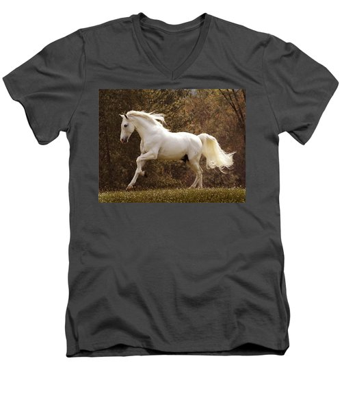 Dream Horse Men's V-Neck T-Shirt by Melinda Hughes-Berland