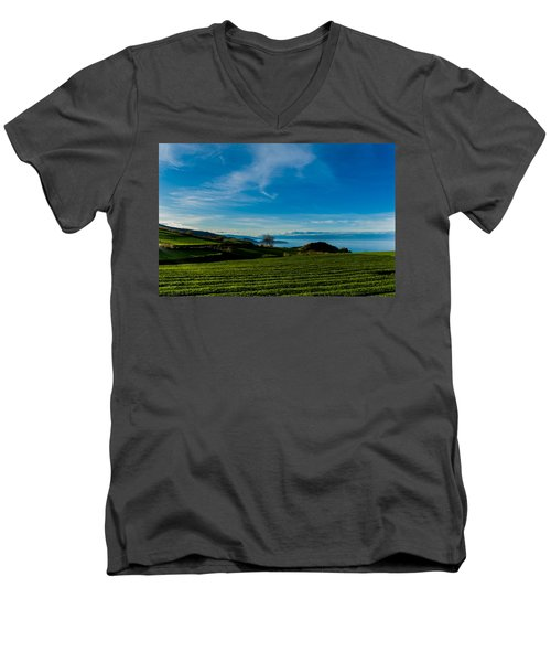 Field Of Tea Men's V-Neck T-Shirt