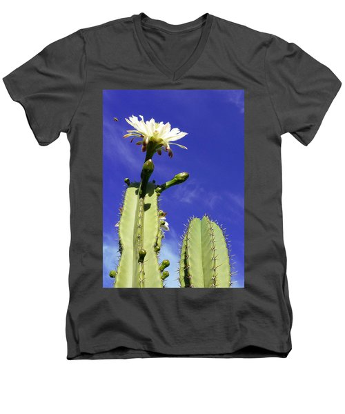 Men's V-Neck T-Shirt featuring the photograph Flowering Cactus 2 by Mariusz Kula