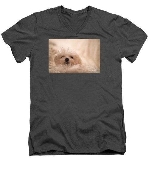 Fresh From A Long Winter's Nap Men's V-Neck T-Shirt by Lois Bryan