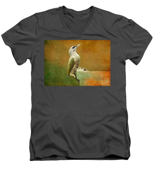 Grey-headed Woodpecker Men's V-Neck T-Shirt by Heike Hultsch