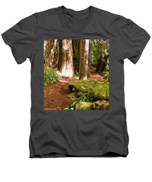 Hiking Trail Men's V-Neck T-Shirt