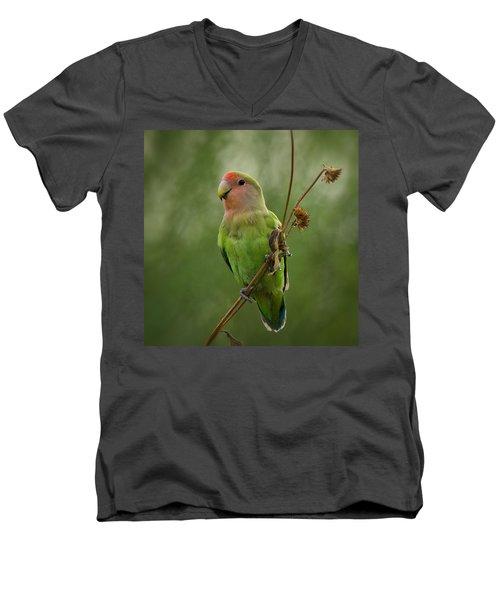 Lovely Little Lovebird  Men's V-Neck T-Shirt