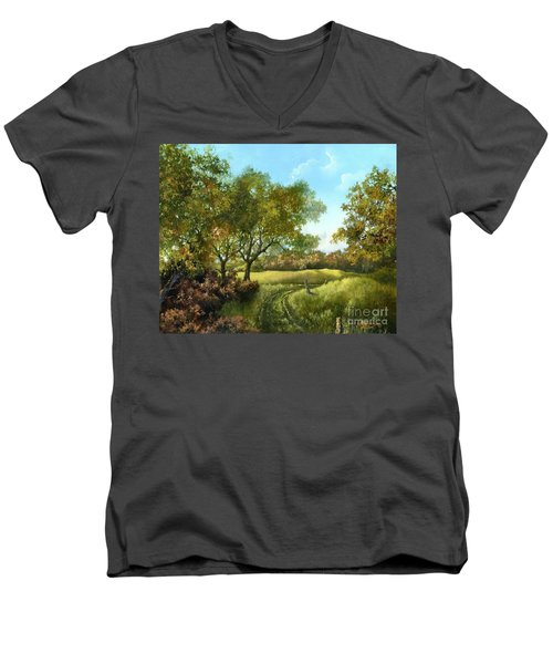 Luray Pasture Men's V-Neck T-Shirt