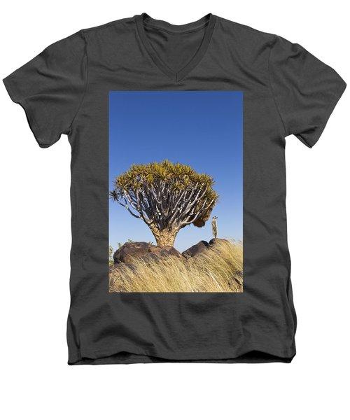 Meerkat In Quiver Tree Grassland Men's V-Neck T-Shirt