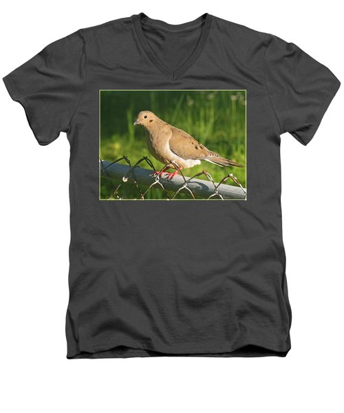Morning Dove I Men's V-Neck T-Shirt by Debbie Portwood