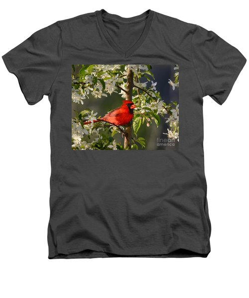 Red Cardinal In Flowers Men's V-Neck T-Shirt