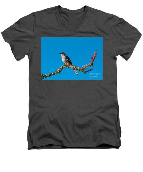 Northern Mockingbird Men's V-Neck T-Shirt