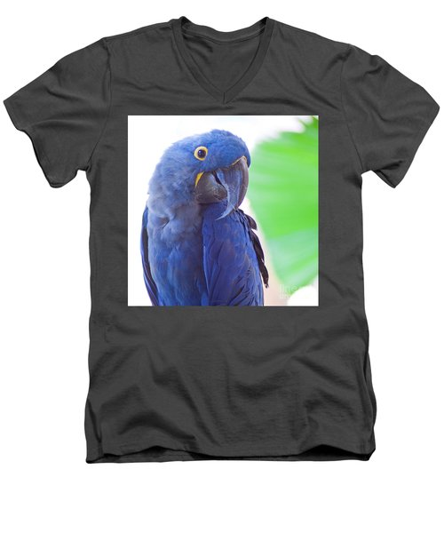 Men's V-Neck T-Shirt featuring the photograph Posie by Roselynne Broussard