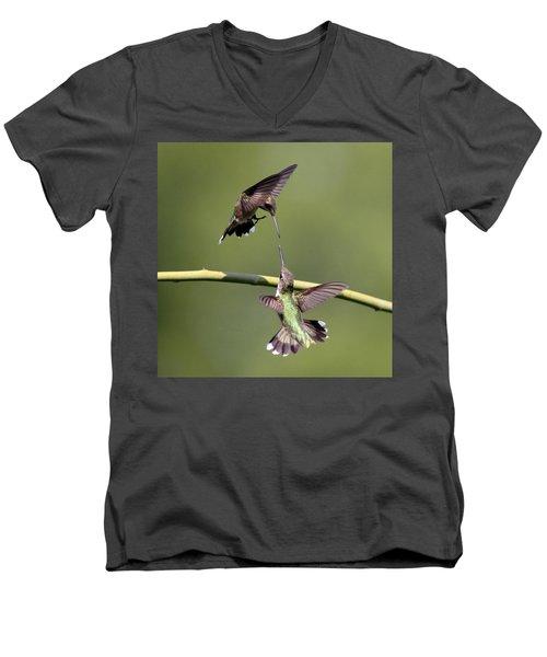Ruby-throated Hummingbird Men's V-Neck T-Shirt by Travis Truelove