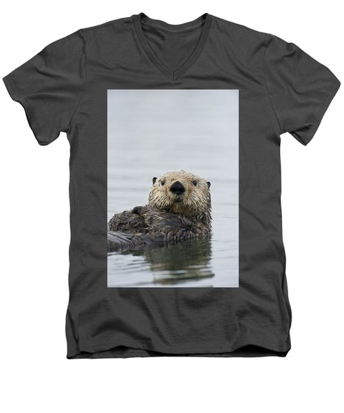 Sea Otter Alaska Men's V-Neck T-Shirt