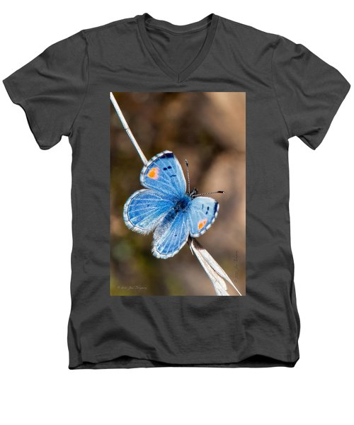 Men's V-Neck T-Shirt featuring the photograph Sonoran Blue by Jim Thompson