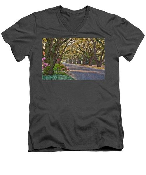 South Boundary In Spring Men's V-Neck T-Shirt
