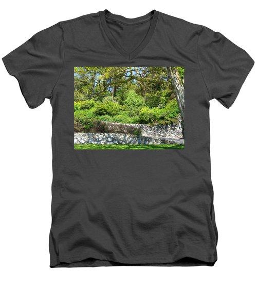 Stone Wall 1 Men's V-Neck T-Shirt