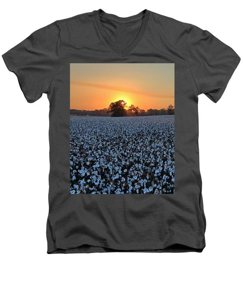 Sunset Over Cotton Men's V-Neck T-Shirt