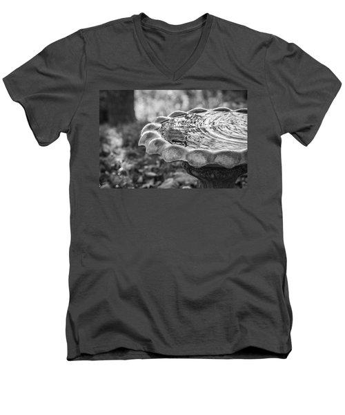 Tennessee Birdbath Men's V-Neck T-Shirt