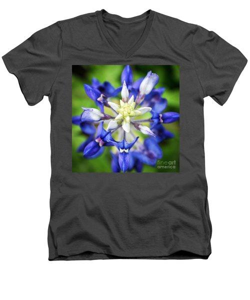 Texas Bluebonnet Men's V-Neck T-Shirt