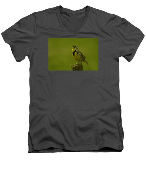 The Meadowlark Sings Men's V-Neck T-Shirt