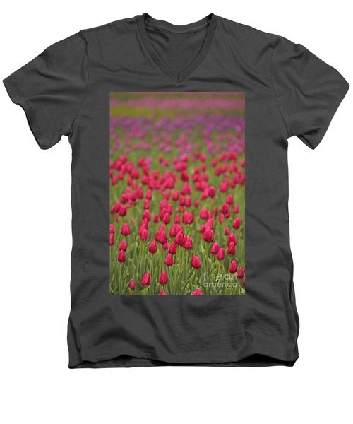 Tulip Beds Forever Men's V-Neck T-Shirt