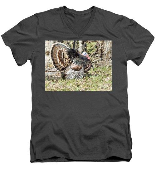 Turkey Tom Men's V-Neck T-Shirt