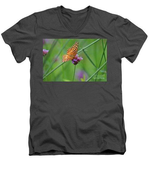 Variegated Fritillary Butterfly In Field Men's V-Neck T-Shirt