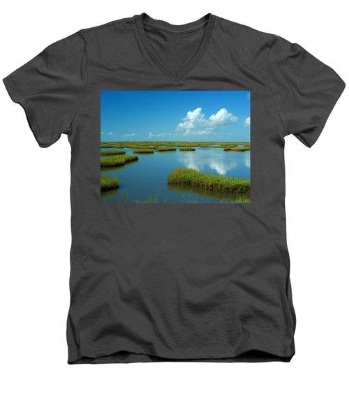 Wetlands Men's V-Neck T-Shirt