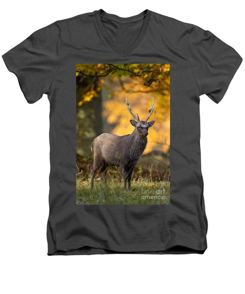 110307p073 Men's V-Neck T-Shirt