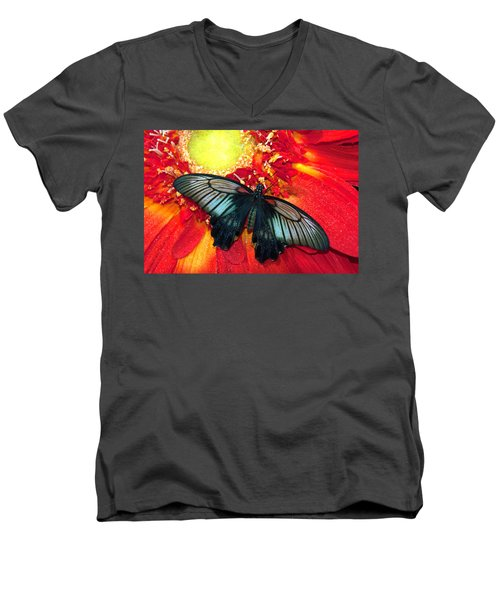 Butterfly Men's V-Neck T-Shirt by Tam Ryan
