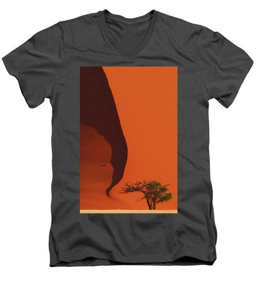 120118p072 Men's V-Neck T-Shirt by Arterra Picture Library
