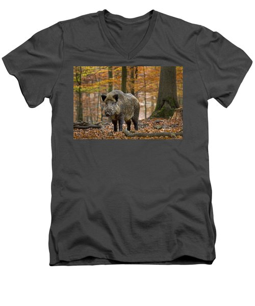 Men's V-Neck T-Shirt featuring the photograph 121213p283 by Arterra Picture Library