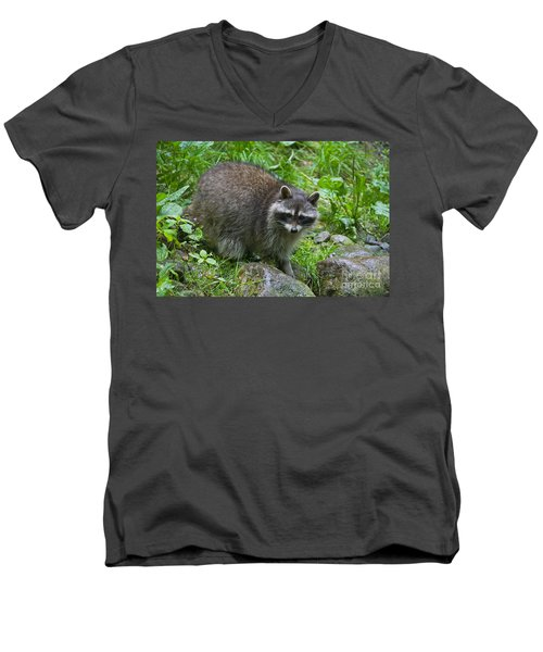 Men's V-Neck T-Shirt featuring the photograph 130201p045 by Arterra Picture Library