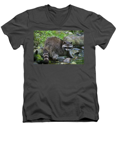 Men's V-Neck T-Shirt featuring the photograph 130201p047 by Arterra Picture Library